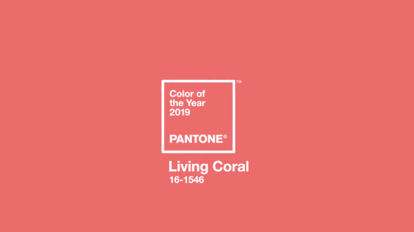 pantoen colour of the year 2019 living coral